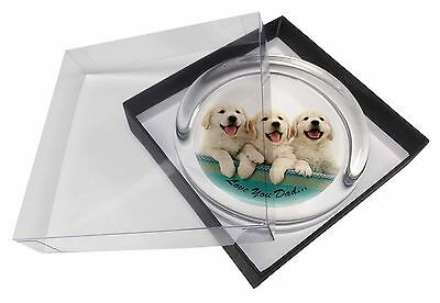 Golden Retrievers 'Love You Dad' Glass Paperweight in Gift Box Christm, DAD-41PW