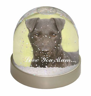 Patterdale Terrier 'Love You Mum' Photo Snow Dome Waterball Stockin, AD-PT2lymGL