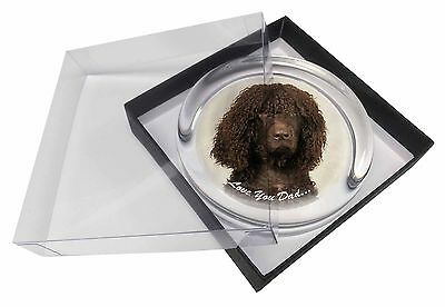 Irish Water Spaniel 'Love You Dad' Glass Paperweight in Gift Box Chris, DAD-59PW