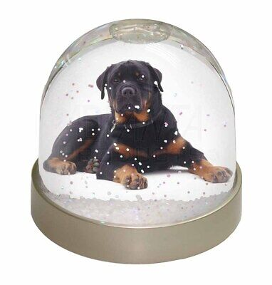 Rottweiler Dog Photo Snow Dome Waterball Stocking Filler Gift, AD-RW3GL