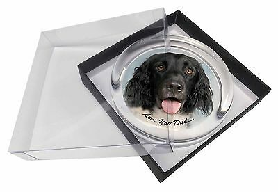 Munsterlander Dog 'Love You Dad' Glass Paperweight in Gift Box Christm, DAD-78PW