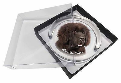 Newfoundland Dog 'Love You Dad' Glass Paperweight in Gift Box Christma, DAD-79PW
