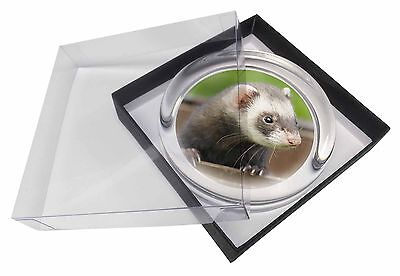 Ferret Print Glass Paperweight in Gift Box Christmas Present, FER-2PW