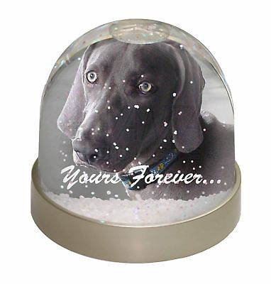 Weimaraner Dog 'Yours Forever' Photo Snow Dome Waterball Stocking Fill, AD-W79GL