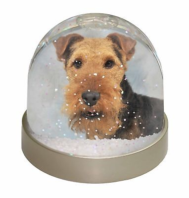 Welsh Terrier Dog Photo Snow Dome Waterball Stocking Filler Gift, AD-WT1GL