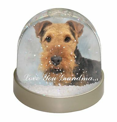 Welsh Terrier 'Love You Grandma' Photo Snow Dome Waterball Stocking, AD-WT1lygGL