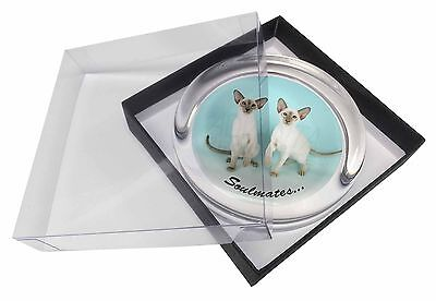 Siamese Cats 'Soulmates' Sentiment Glass Paperweight in Gift Box Chris, SOUL-2PW