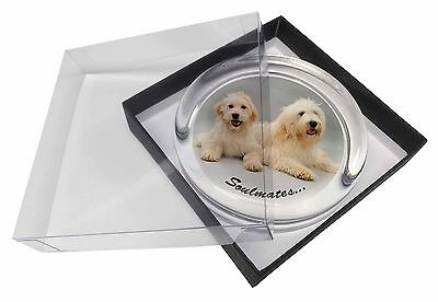 Labradoodle Dogs 'Soulmates'  Glass Paperweight in Gift Box Christmas, SOUL-40PW