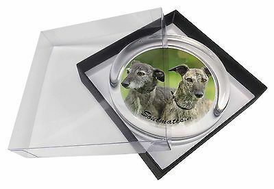 Whippet Dogs 'Soulmates' Sentiment Glass Paperweight in Gift Box Chri, SOUL-41PW