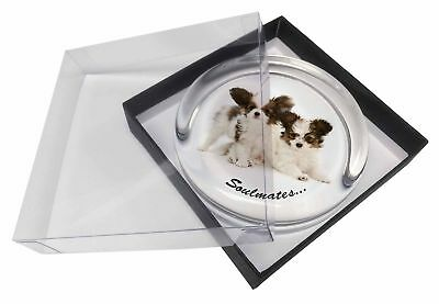 Papillon Puppy Dog 'Soulmates' Glass Paperweight in Gift Box Christma, SOUL-44PW