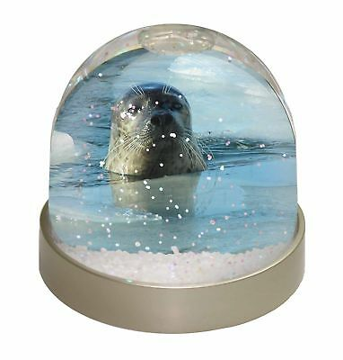 Sea Lion in Ice Water Photo Snow Dome Waterball Stocking Filler Gift, AF-S2GL