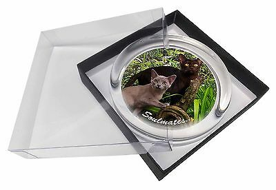 Burmese Cats 'Soulmates' Sentiment Glass Paperweight in Gift Box Chris, SOUL-4PW