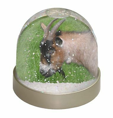 Cheeky Goat Photo Snow Dome Waterball Stocking Filler Gift, AGO-1GL