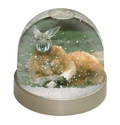 Cheeky Kangaroo Photo Snow Dome Waterball Stocking Filler Gift, AK-1GL