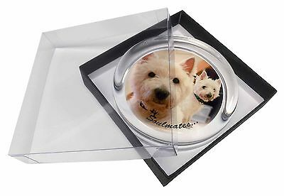 Westies 'Soulmates' Sentiment Glass Paperweight in Gift Box Christmas, SOUL-62PW