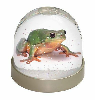 Tree Frog Reptile Photo Snow Dome Waterball Stocking Filler Gift, AR-A7GL