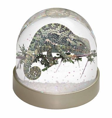 Chameleon Lizard Photo Snow Dome Waterball Stocking Filler Gift, AR-L5GL