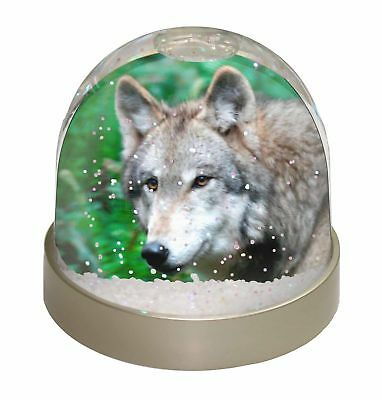 SOUL-82GL Sunset Wolves /'Soulmates/' Photo Snow Globe Waterball Stocking Filler