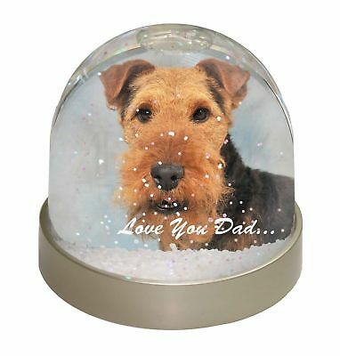 Welsh Terrier Dog 'Love You Dad' Photo Snow Dome Waterball Stocking F, DAD-136GL