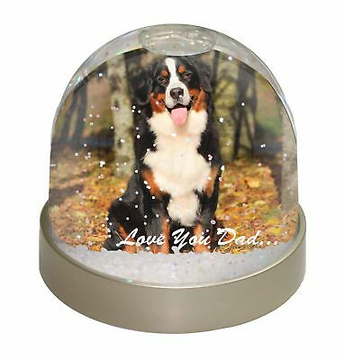 Bernese Mountain Dog 'Love You Dad' Photo Snow Dome Waterball Stocking , DAD-9GL