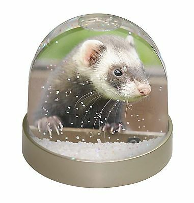 Ferret Print Photo Snow Dome Waterball Stocking Filler Gift, FER-2GL