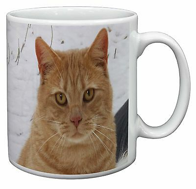 Pretty Ginger Cat Coffee/Tea Mug Christmas Stocking Filler Gift Idea, AC-116MG