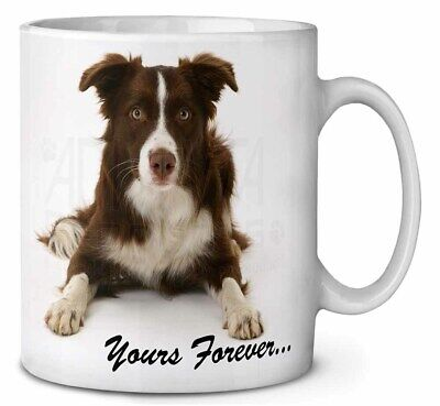 """Liver and White Border Collie """"Yours Forever..."""" Coffee/Tea Mug Chri, AD-CO81yMG"""