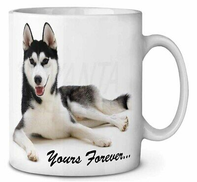 Siberian Husky 'Yours Forever' Coffee/Tea Mug Christmas Stocking Fill, AD-H55yMG