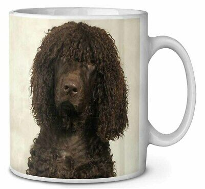 Irish Water Spaniel Dog Coffee/Tea Mug Christmas Stocking Filler Gift , AD-IWSMG