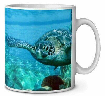 Turtle by Coral Coffee/Tea Mug Christmas Stocking Filler Gift Idea, AF-T20MG