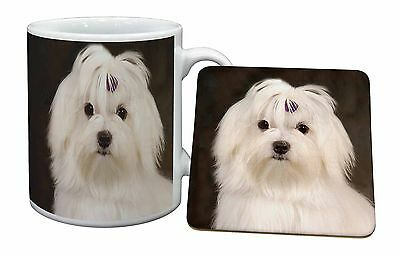 Maltese Dog Mug+Coaster Christmas/Birthday Gift Idea, AD-M1MC