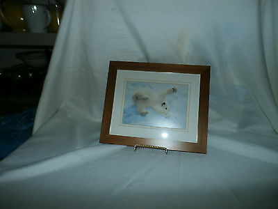 PRICE DROP! Baby Polar Bear Wood Framed Picture Coldwater Creek Design