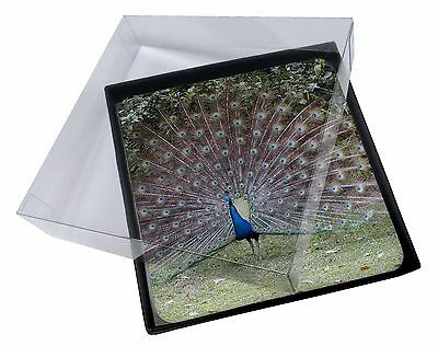 4x Colourful Peacock Picture Table Coasters Set in Gift Box, AB-PE76C