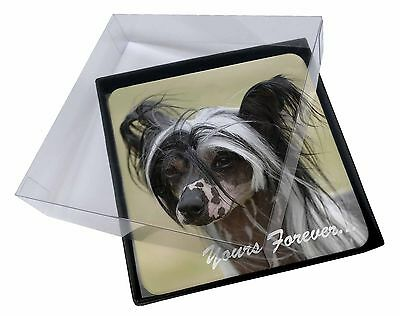 """4x Chinese Crested Dog """"Yours Forever..."""" Picture Table Coasters Set , AD-CHC2yC"""