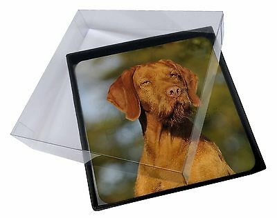 4x Hungarian Vizsla Wirehaired Dog Picture Table Coasters Set in Gift , AD-HWV1C