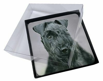 4x Kerry Blue Terrier Dog Picture Table Coasters Set in Gift Box, AD-KB1C