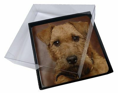 4x Lakeland Terrier Dog Picture Table Coasters Set in Gift Box, AD-LT2C