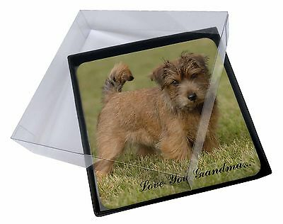 4x Norwich Norfolk Terrier 'Grandma' Picture Table Coasters Set in G, AD-NT1lygC