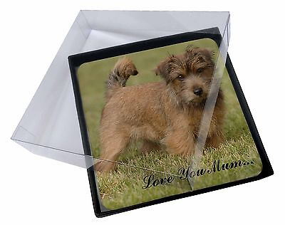 4x Norfolk Norwich Terrier 'Love You Mum' Picture Table Coasters Set, AD-NT1lymC