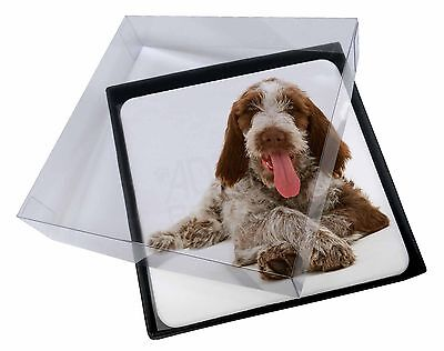 4x Italian Spinone Dog Picture Table Coasters Set in Gift Box, AD-SP2C