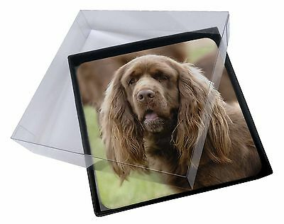 4x Sussex Spaniel Dog Picture Table Coasters Set in Gift Box, AD-SUS1C