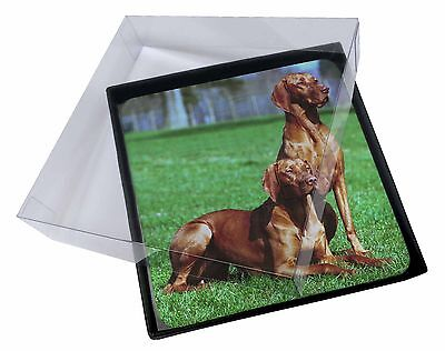 4x Hungarian Vizslas Picture Table Coasters Set in Gift Box, AD-V1C