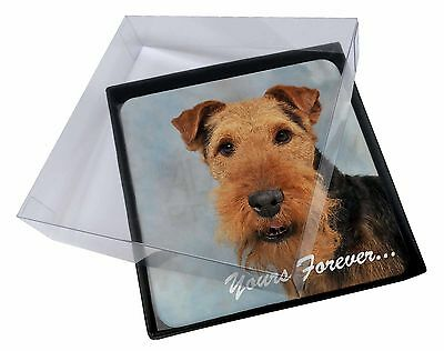 4x Welsh Terrier 'Yours Forever' Picture Table Coasters Set in Gift Bo, AD-WT1yC