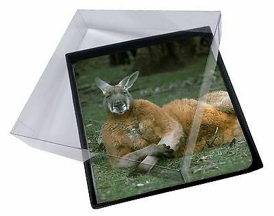 4x Cheeky Kangaroo Picture Table Coasters Set in Gift Box, AK-1C