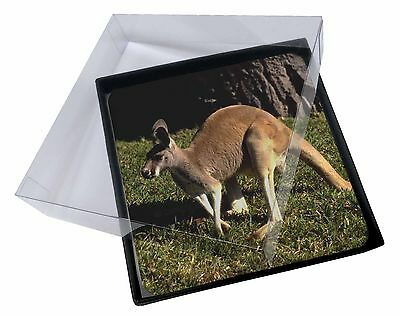 4x Kangaroo Picture Table Coasters Set in Gift Box, AK-2C