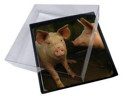 4x Pigs in Sty Picture Table Coasters Set in Gift Box, AP-10C