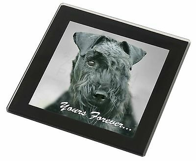 Kerry Blue Terrier 'Yours Forever' Black Rim Glass Coaster Animal Bre, AD-KB1yGC
