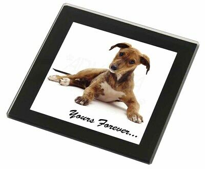 Lurcher Dog 'Yours Forever'  Black Rim Glass Coaster Animal Breed Gift, AD-LU4GC