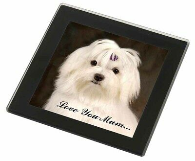 Maltese Dog 'Love You Mum' Black Rim Glass Coaster Animal Breed Gift, AD-M1lymGC