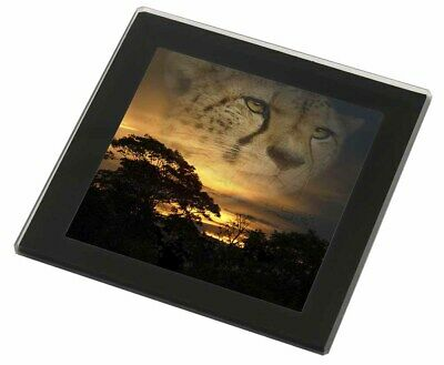 Cheetah Watch Black Rim Glass Coaster Animal Breed Gift, AT-41GC